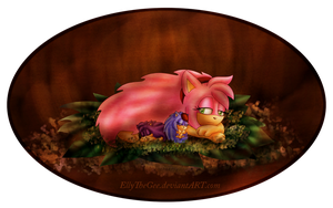 A sight into a hedgehog den by EllyTheGee