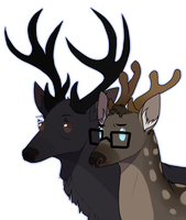 DEER by ninetail-fox