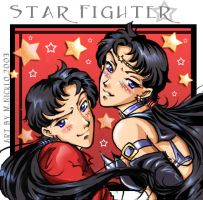 Star Fighter by luniara