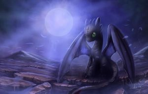 How to train your dragon Toothless by zilvart