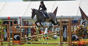 Show Jumping 10 by Sooty-Bunnie