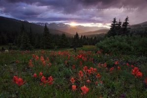 Paintbrush Pass by Nate-Zeman
