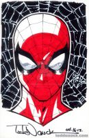 Spider-Man head sketch 04-13 by ToddNauck