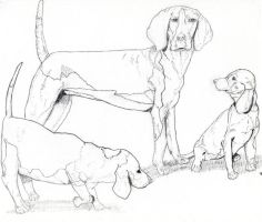 Dogs for School Assigment by IntelligentZombie