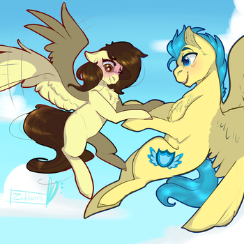 Flight lesson -com- by Zakkurro