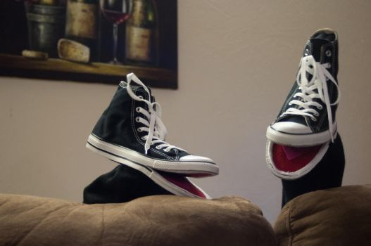 Converse Chuck Taylor Hi Top Sneaker Hand Puppets by foreverprairie