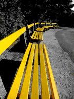 row of benches by xcraziiex