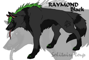 Character Sheet - Raymond Black by Solitaire-Loup