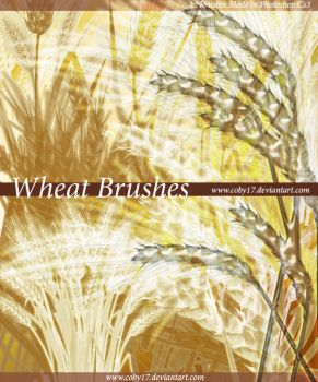 Wheat Brushes by Coby17
