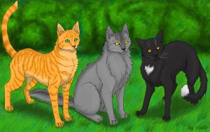Firepaw, Graypaw and Ravenpaw by Vialir