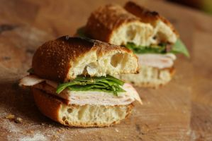 Turkey Sandwich by froggynaan