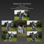 Pack 147 Tarmon Gai'don by Elandria