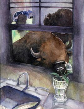 Bison in the Suburb by ohsnap-son