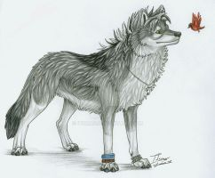 Wolf and Bird by itsmar