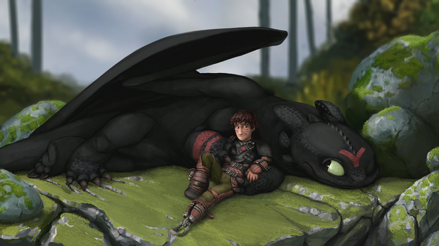 Hiccup and Toothless: After the Race by Duiker
