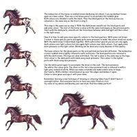 Tutorial LindaColijn part 2 by fascination-horse