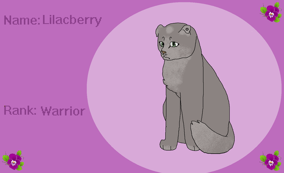 Lilacberry ref by PointFreeadopts