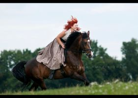 Horse Bogumil 4 by paula2206-photo