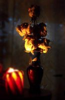 Candle and Roses by Villainess-Vi