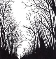 Dark Forest by ngoc50