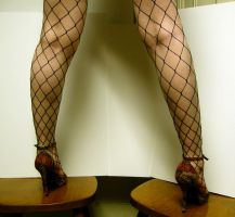 Leg - Fishnet Stock12 by D-is-for-Duck