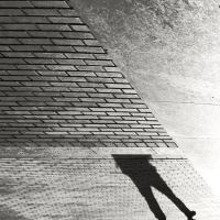 Strange Legs in the box by Vis-Felavis