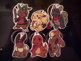Pokemon Charms by Miiroku