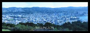 Wellington City by markskywalker