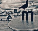 Harbour Love. Barcelona. by Borymir