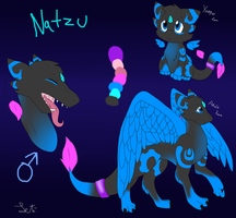 .:2013:. Natzu ref sheet by Letipup