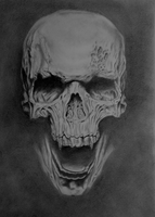Skull pencil drawing by ExactMouser