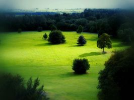 Green Ireland by georgmaxklein