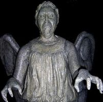 WEEPING ANGELS ARE SCARY by xXdixonXx