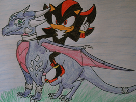 SHADOW the hedgehog and CYNDER by shadowhatesomochao
