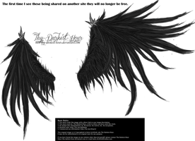Wicked Wings - Black by Thy-Darkest-Hour