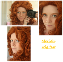 Brave - Merida wig test by dreamcatcher-hina