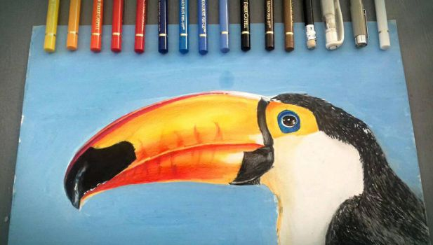 The Toucans Sky by AnArtEnthusiast