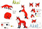 Akai Ref-Sheet by WindmelodieSoMu