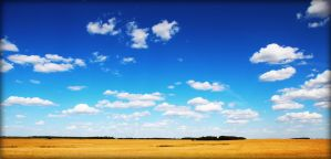 Prairie Skies by Joe-Lynn-Design