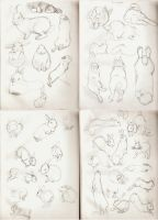 Bunny Studies by m3ru