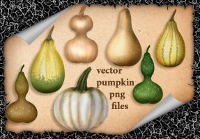 Vector Pumpkin by roula33