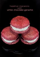 A super long title for a macaron. by munchinees