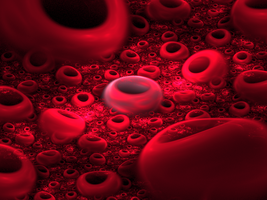 Red Blood Cells by AsaLegault