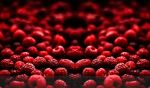 Blood Fruit Wallpaper by Project-Pestilence