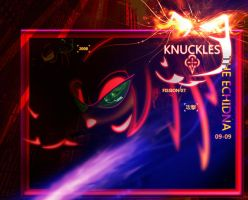 KNUCKLES  THE ECHIDNA  ART by Fission07