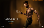 The Wolverine by Law67