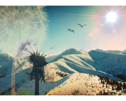 dandelion snow by Kerbi