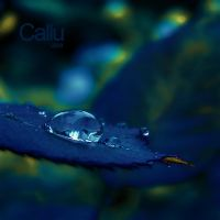 Blue Variation by Callu
