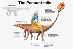 REP: The Pennant-tails by Ramul