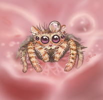 Spidercat's love by shivikai